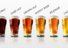 683_beer_comparison_0_1_Image1
